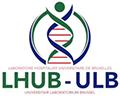 Logo lhub